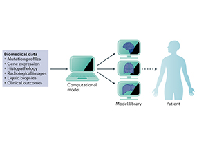 Deconstructing Complex Oncogenic Signalling with Computational Models