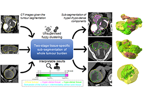 Tissue-specific and Interpretable Sub-segmentation of Whole Tumour Burden on CT Images by Unsupervised Fuzzy Clustering